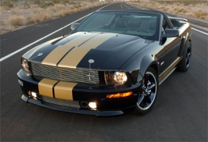 2008 ford mustang photos